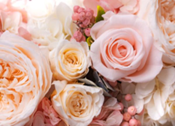 年代を問わず喜ばれる花ギフトサムネイル